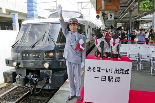 Espacios cool: un tren en Japón para los más pequeños