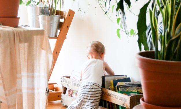 La importancia del humificador para crear el mejor ambiente para tus hijos