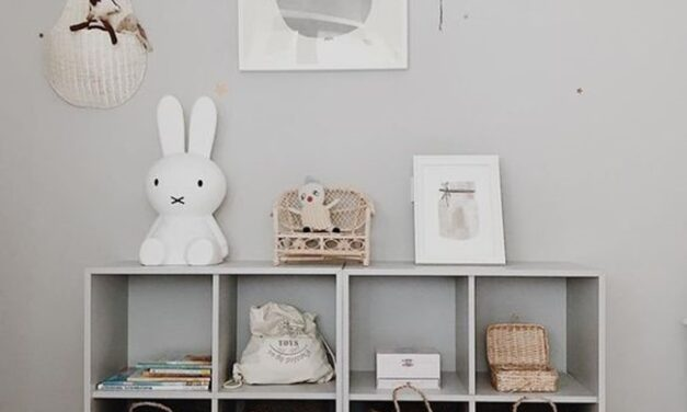 Todo lo que no sabes para que tu hogar sea un lugar mejor: manual para organizar tu casa